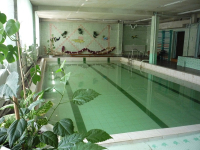 bassein
